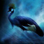 133 – Restoring Wonder: Hongzhi's Guidepost of Silent Illumination – Part 2